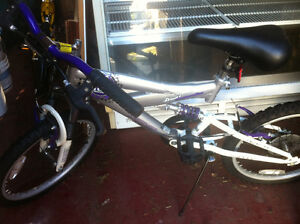 Youth Girl's 5 Speed Bicycle -  Purple and Silver