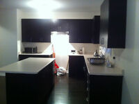 5 month new Kitchen for Sale, including sink and range hood