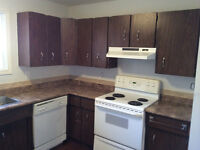 Renovated 3 bed/1.5 bath Millwoods Townhouse $1399/month May 1