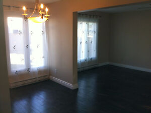 HUGE AND WONDERFUL 3 BEDROOMS FOR RENT.