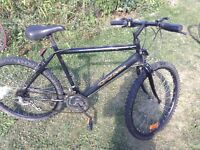 "Ccm 18"" Mountain bike 21 Speed"