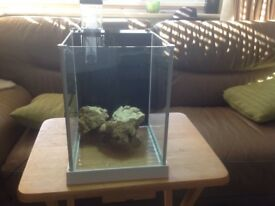 Small flavell marine tank