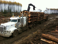 CTL logging truck driver need