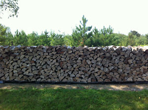 100% Hardwood Firewood Kingston Kingston Area image 1