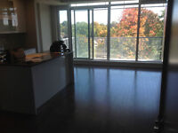 1 bed condo at 98 Richmond road (Westboro,QWest)