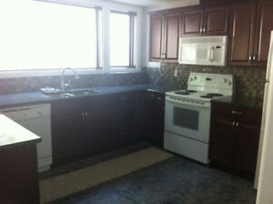 Basement suite for rent in Kimberley BC.