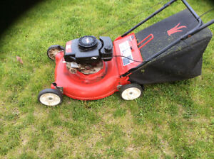 Lawnmower for very cheap