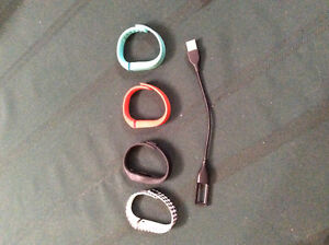 Fitbit Flex Bands and Charger