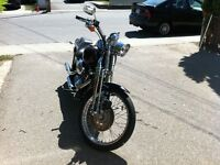 Softail Spinger