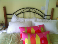 queen size head board and metal bed frame