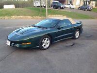 1995 Pontiac Trans Am Cabriolet