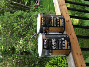 Behr Transparent Natural Colour stain