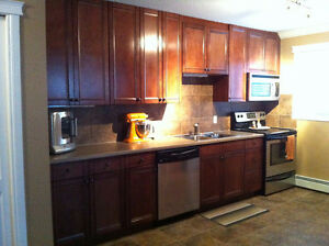 Renovated 2 bd apartment style condo in Queen Mary Park
