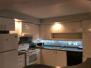 Beautiful one bedroom condo downtown Montreal