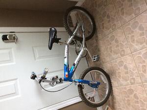 """Boys 16"""" 'Molten' Supercycle"""