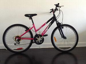 Next mountain bike