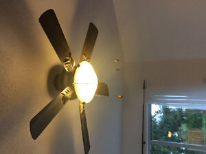 Wood ceiling fan and light