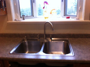 Kitchen sink, taps and soap dispenser