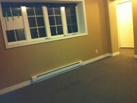 Spacious, above ground basement apt in Mt. Pearl w/alarm system