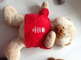 3foot teddy bear