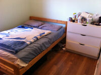 Huge, cheap apartment for sublet – girls only please
