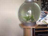 Fish aquaria