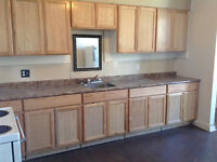 **Newly Renovated 3 Bedroom Apt for Rent in Beachburg