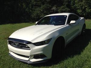 2015 Ford Mustang 50 ieme Coupé (2 portes)