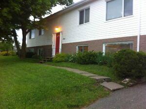 Multi Family Home- 294 Millidge Ave- MLS# SJ164305