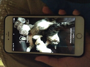 I'm selling my IPhone 6plus 16G with Bell.