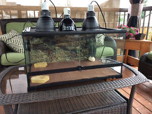 Bearded dragon/gecko/Chinese water dragon enclosure