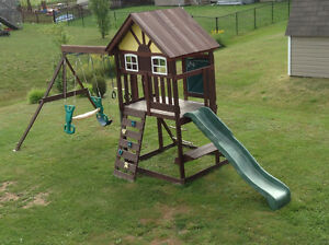 Swing set and Play Structure