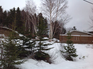 Land in Gillams, New Price