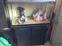 40 gal fish tank,filter,gravel
