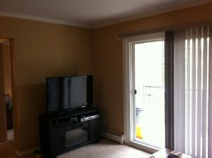 Well Maintained Two Bedroom Apartment, Utilities Included