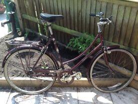 Old original Raleigh cameo ladies road bike