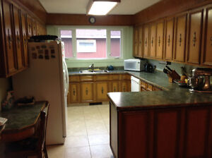 Elm Kitchen Cabinets with like new Flow Form Counter Tops
