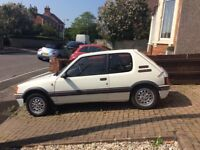 Peugeot 205 Rally Car Project
