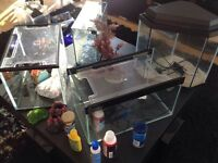 Fish tank (4) all complete with pumps,filters,gravel etc