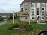 Luxury Living at Evergreen Estates