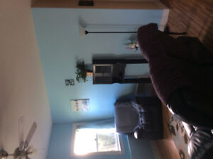 Spacious one bedroom apt, looking for professional tenant