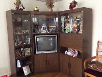 Espace de rangement avec TV incluse