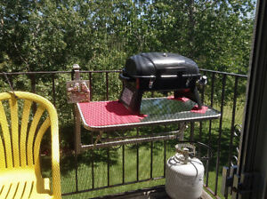 TABLETOP BARBEQUE;  GLASS TABLE;  FULL PROPANE TANK