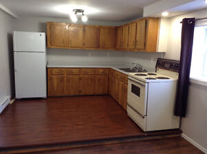 Two bedroom basement apartment near Grenfell