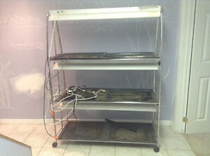 Indoor plant growing system