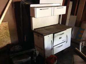 Wood burning stove and oven