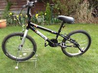 Boys piranha rapture bike