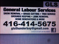 General Labour Services  for grass, leaves, tree, snow and junk