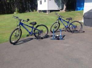 2 trek 3900 bicycles