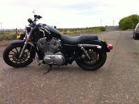 Harley Davidson 883 Low